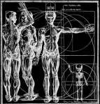 human_machine