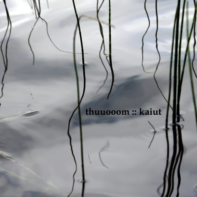 thump313_00_thuuooom_kaiut_cover